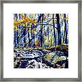 Pebble Creek Autumn Framed Print