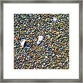 Pepples On The Beach Framed Print