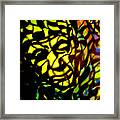 Picasso Framed Print by Gayland Morris