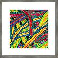 Picasso Paintbrush Croton Framed Print