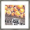 Pie Pumpkins For Sale Framed Print