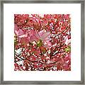 Pink Dogwood Flowering Tree Art Prints Canvas Baslee Troutman Framed Print