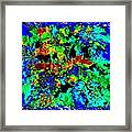 Pizzazz 52 Framed Print