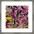 Plant Life Framed Print by Eikoni Images