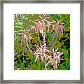 Plant Power 8 Framed Print by Eikoni Images