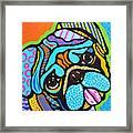 Pooped Pup Framed Print