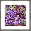 Psychedelica Framed Print