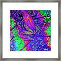 Psychodelic Tree Frog Framed Print