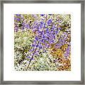 Pure Wild  Purple Framed Print