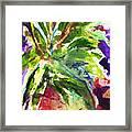 Purple Pineapple Framed Print