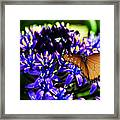 Purple World Framed Print