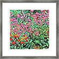 Radford Flower Garden Framed Print