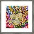 Rainbow-colored Sunfish Framed Print