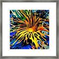 Rainbow Thunder Well Framed Print