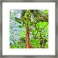 Rainforest Green Framed Print