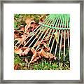 Raking The Fallen Autumn Leaves Framed Print