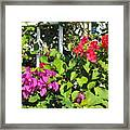 Red And Purple Flowers Framed Print