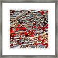 Red Cobblestone Road Framed Print