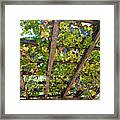 Red Grapes Hanging From A Trellis Napa Valley California Framed Print by George Oze