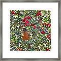 Red Robin And Cedar Waxwing 1 Framed Print