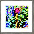 Redbird Dreaming About Why Love Is Always Important Framed Print