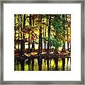 Reflection In Paint Framed Print