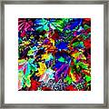 Riot Of Color Framed Print