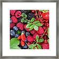 Ripe Of  Fresh Berries Framed Print
