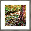 River Hafren In September Framed Print
