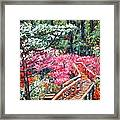 Roanoke Beauty Framed Print