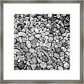 Rocks From Beaches In Black And White Framed Print
