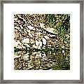 Rocks Reflecting Off Water Framed Print