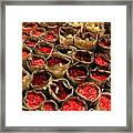 Rose Rolled In Newspaper Framed Print