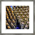 Rounds For Rounds Framed Print
