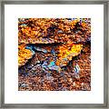 Rust Abstract 9 Framed Print