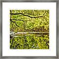 Santa Fe River Framed Print