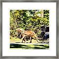Saturday Morning Ride Framed Print
