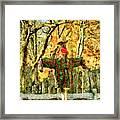 scarecrow in field at Stanhope Waterloo Village Framed Print
