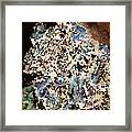 Scrap Yard Mosaic Framed Print