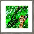 Sculptured Falling Tree Framed Print