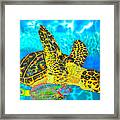 Sea Turtle And Parrotfish Framed Print