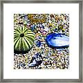 Seashore Colors Framed Print