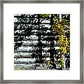 Shadows On The Past Posterized Framed Print