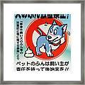 Shy Dog Framed Print