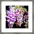 Simple Pleasures From The Garden Framed Print