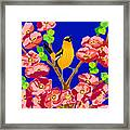 Singing Oriole Framed Print