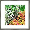 Snail In A Rich Composition Framed Print