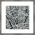 Snow Tree Framed Print