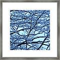 Snowy Branches Landscape Photograph Framed Print