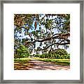 Southern Serenity Framed Print